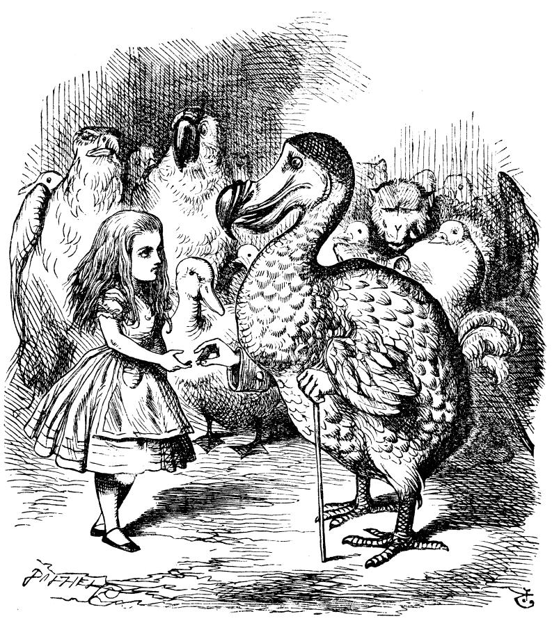 アリスとドードー鳥